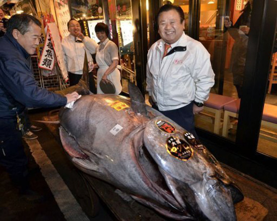 Single tuna fetches record $736k at Japan auction