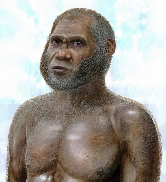 New human species