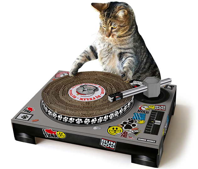 'You gotta hear my sick dubstep MeowReMix.'
