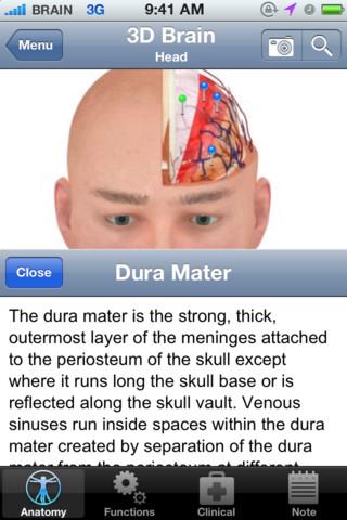 Belajar Tentang Otak Manusia dengan Pocket Brain