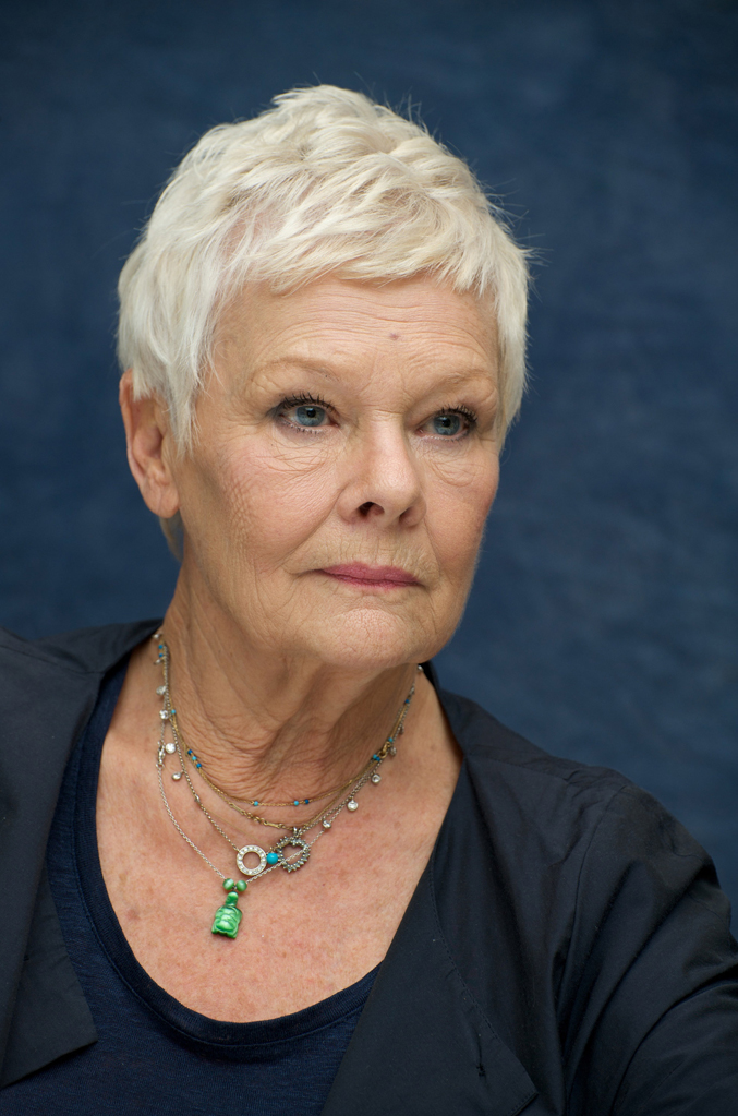 Judi Dench Profile Pic
