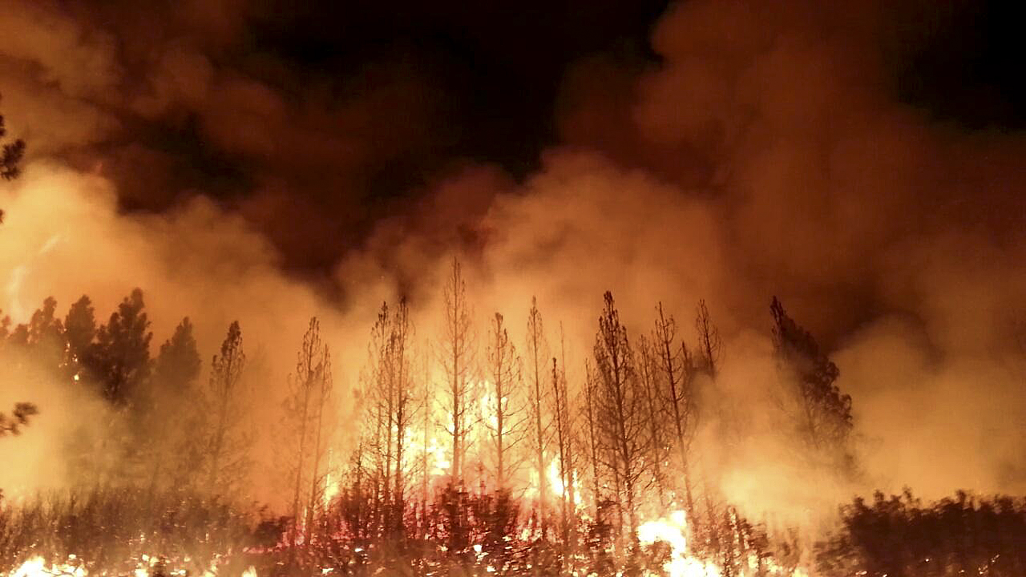 Image result for In Greece the wildfire has taken life of at least 74 people. The blistering rise in temperature observed in Japan; with the news of deaths, and seeking emergency. South and North Korea has also witness the intense heat and humidity.