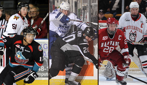 Major junior, the AHL and U.S. college are three non-NHL options for puck-starved hockey fans.