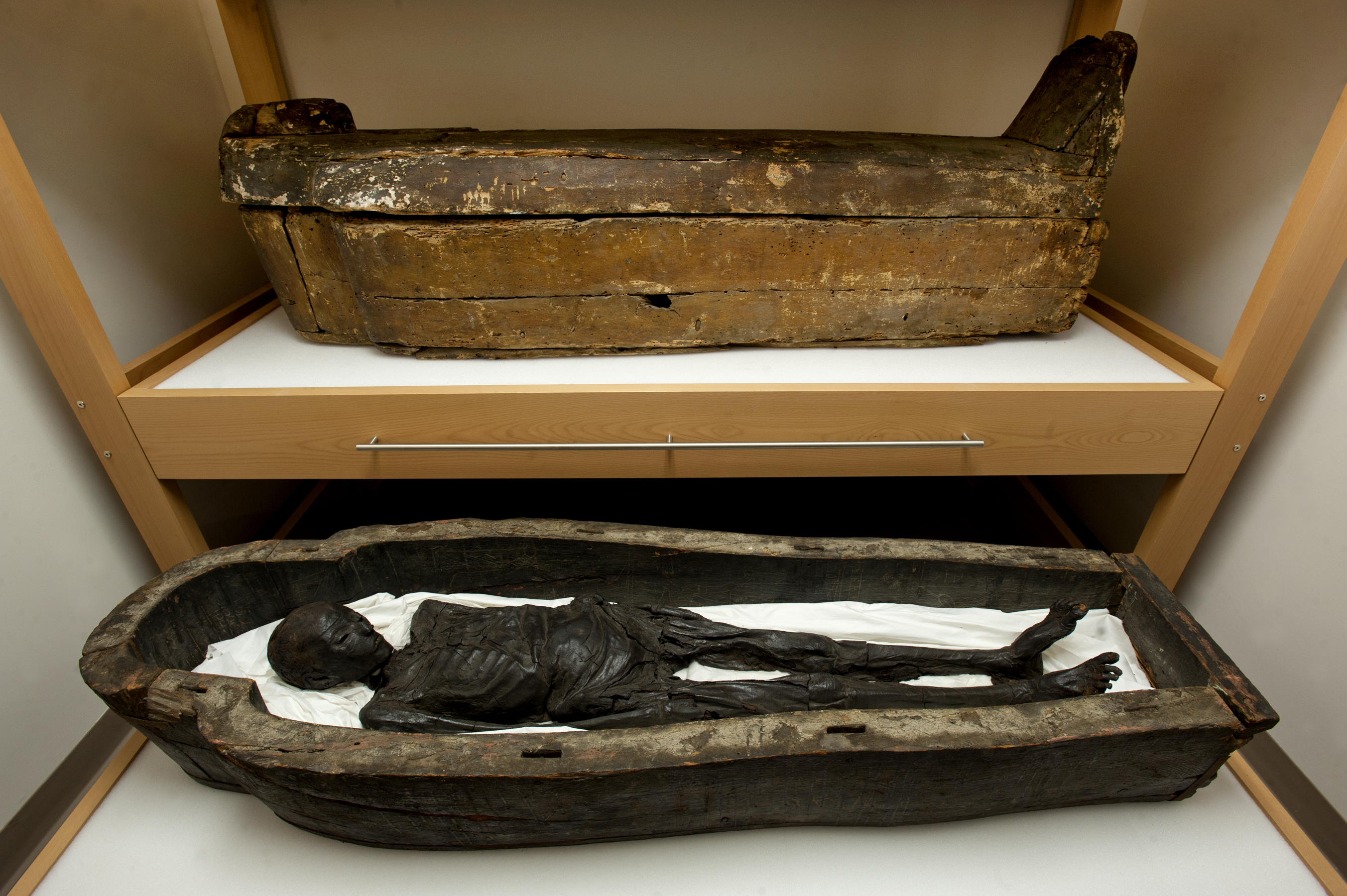 Two mummies were kept at Tulane Stadium for 20 years. (Courtesy of Tulane University)