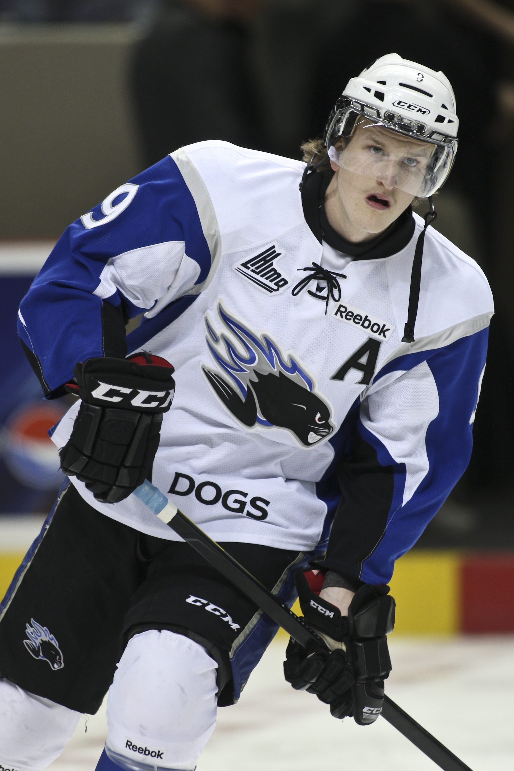 Stephen MacAulay of the Saint John Sea Dogs