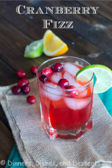 Cranberry Fizz