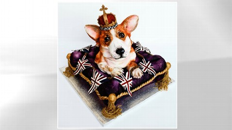 Canine Cakes: Man's Best Friend, Just Sweeter