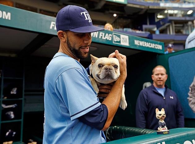 David Price's dog Astro receives assortment of gifts from Dodge…