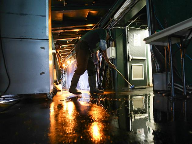 Sewage flooding A's coaches' bathroom at O.co Coliseum