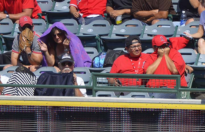 Beekeeper emerges from Angel Stadium stands to help wrangle bee…
