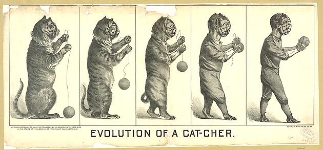Art: Evolution of the catcher