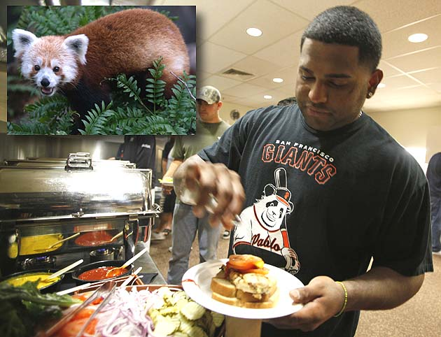 There can be only 1: 'Panda' Sandoval leaves DL, Rusty the Red …