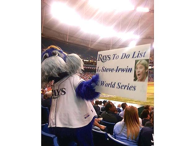 Tampa Bay Rays mascot holds inappropriate Steve Irwin sign