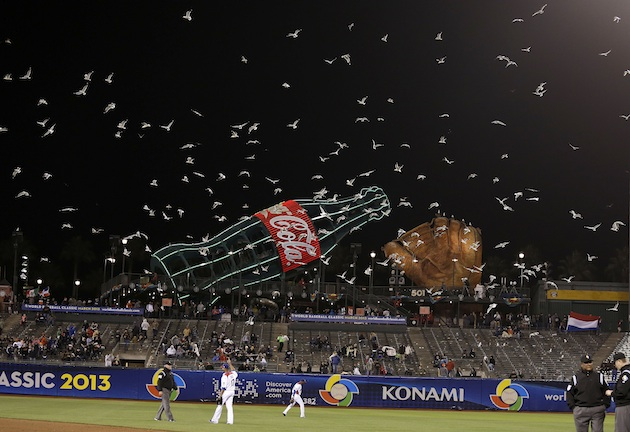 How do seagulls know to show up in the ninth inning of a World …
