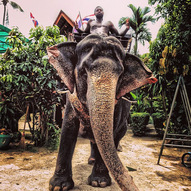 Amir Johnson is spending his offseason taking elephant rides (P…