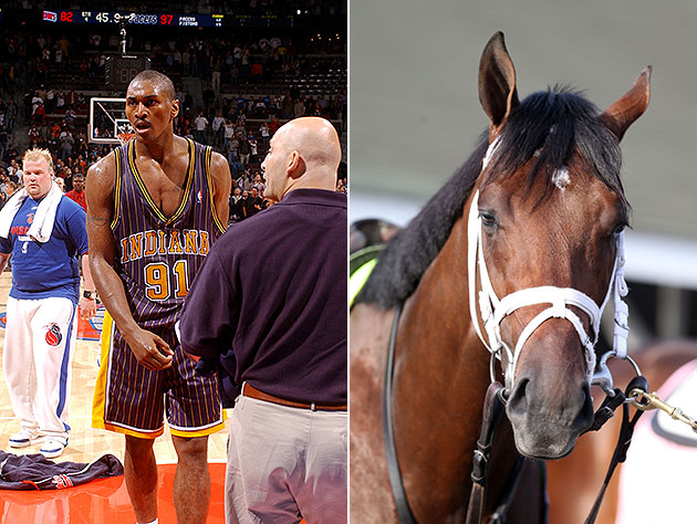 Head's up, NBA fans: There's a horse in the Kentucky Derby name…