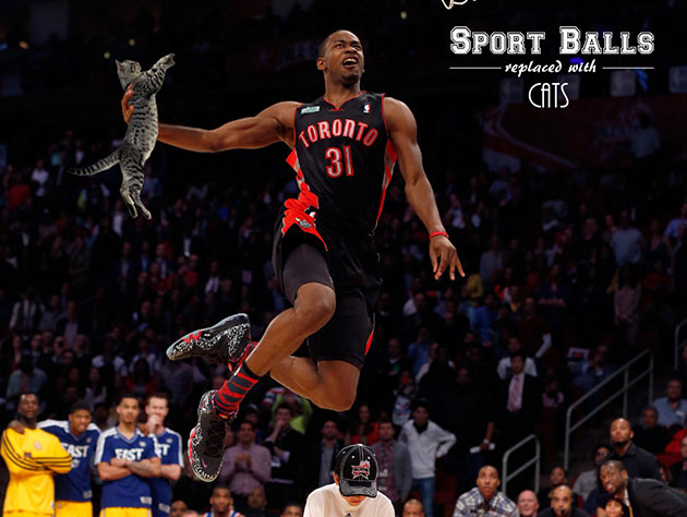 The 10-man rotation, starring Terrence Ross dunking a cat, beca…