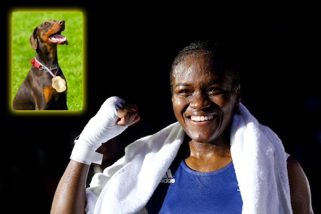 essays against boxing Ban boxing – it's demeaning and dangerous a sport whose sole aim is to cause brain damage to another person is not a noble art it has no place in a civilised society, says a leading neuroscientist.
