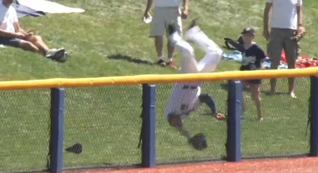 Diamondbacks prospect flips over fence for flippin' awesome cat…