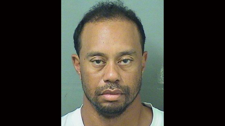 Tiger Woods mug shot.