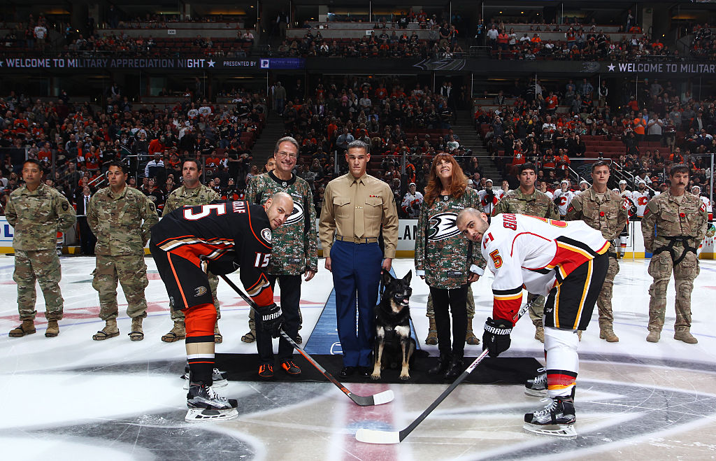Bomb-sniffing dog drops puck at Ducks' 'Salute to Service' (Vid…