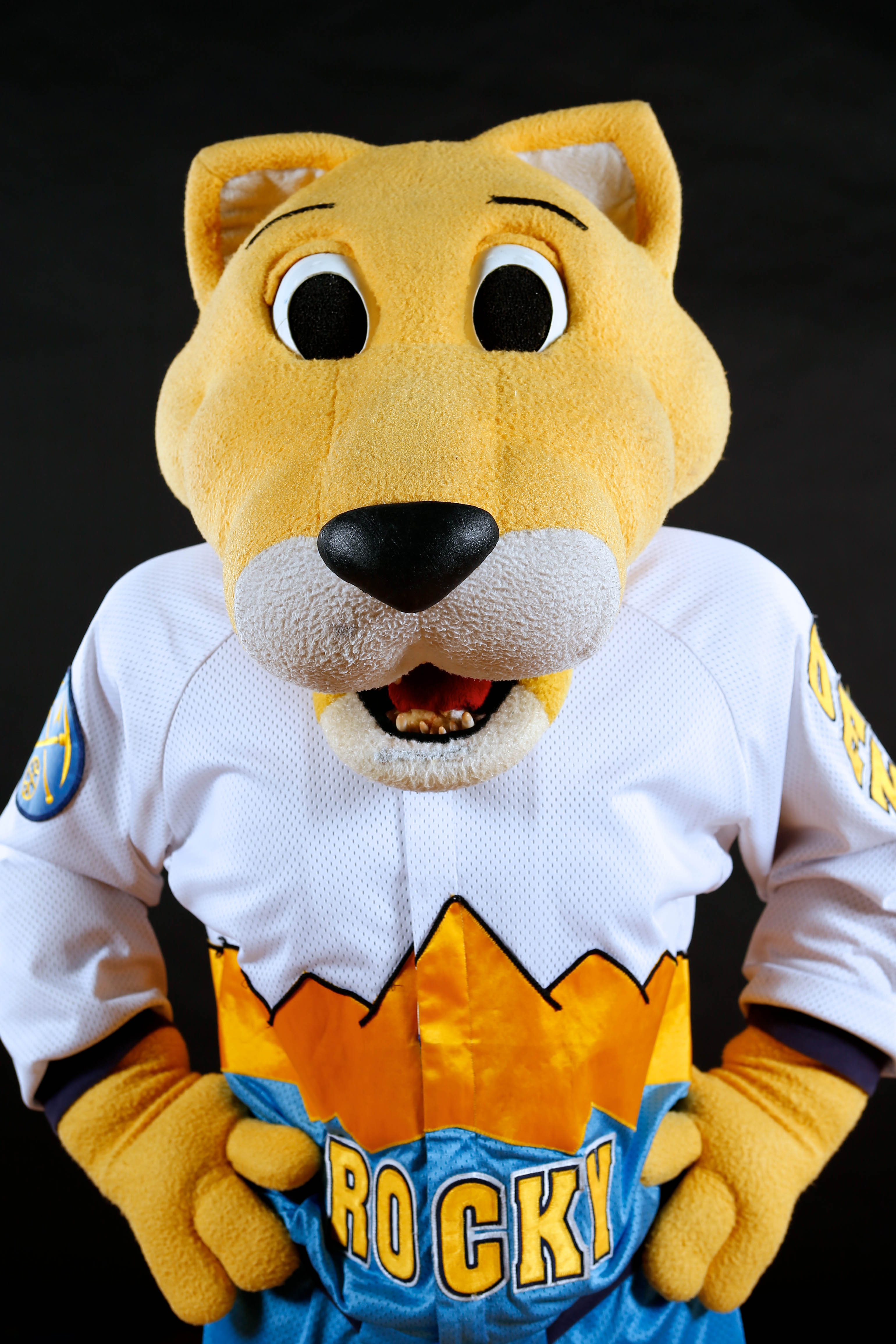 Sep 29, 2014; Denver, CO, USA; Denver Nuggets mascot Rocky poses for a portrait during media day at the Pepsi Center. (Isaiah J. Downing-USA TODAY Sports)