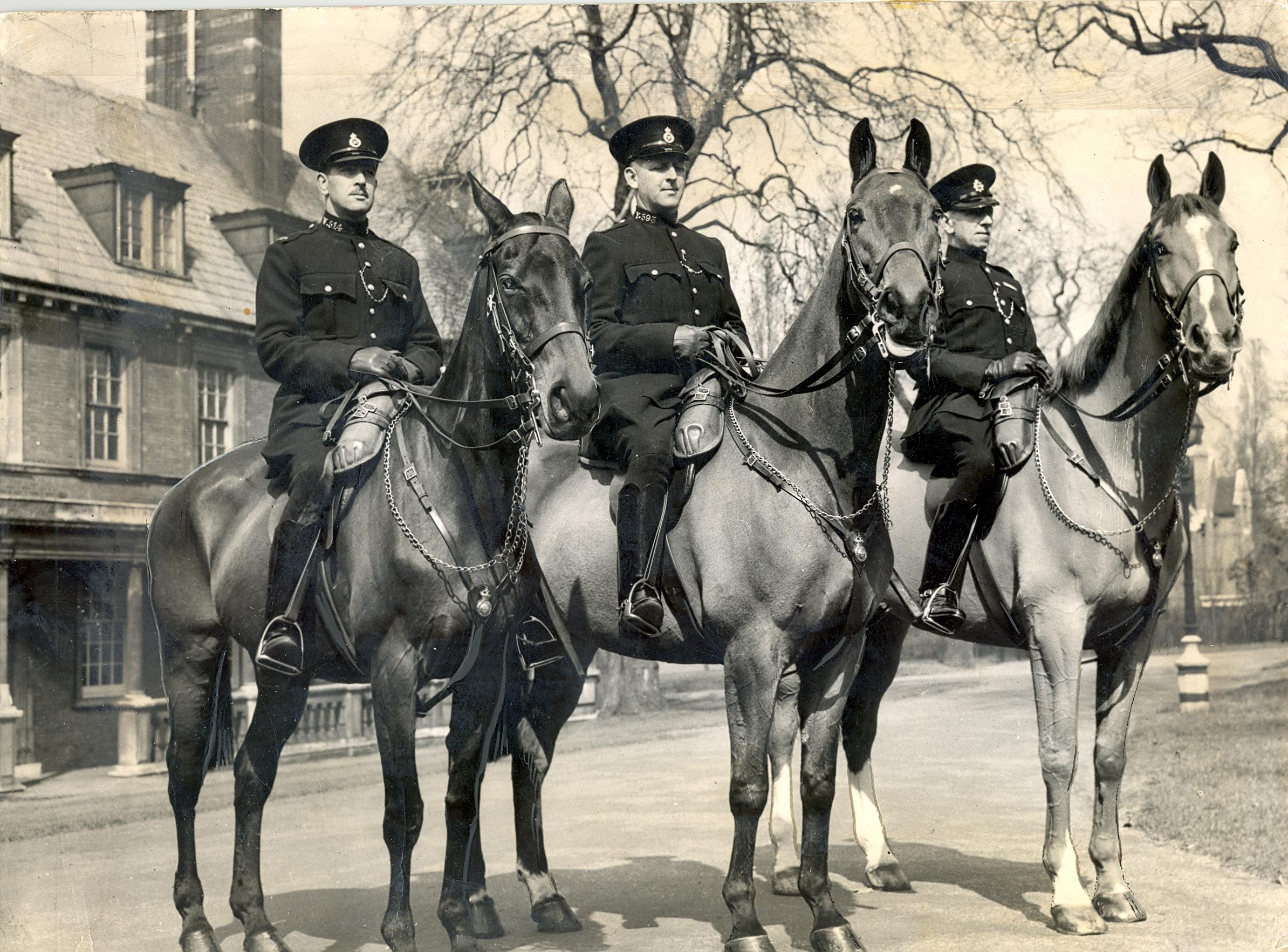 1947: Honouring the Metropolitan Police Mounted Branch: Olga, Regal and Upstart</p></p> <p><p>