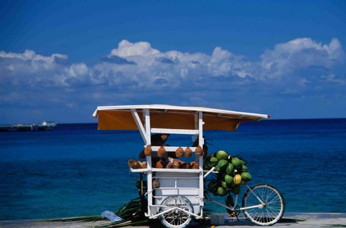 A coconut juice stand on Avenida Rafael Melgar in Cozumel.
