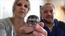Two-faced kitten dies 4 days after birth