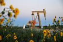 Oil drops as surprise US stock build douses demand recovery hopes