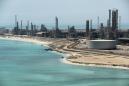 Sole survivor? Saudi Arabia doubles down on oil to outlast rivals