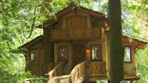 A Plane, a Tree House, and Other Bizarre Homes