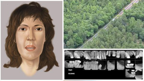 Sketch, dental x-rays of woman found dead in Pemberton Twp., N.J.