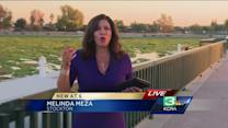 Boaters call water hyacinth plant out of control in Stockton