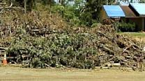 Tornado Debris Removal Costs