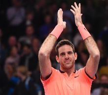 Del Potro wins first ATP title in three years