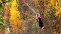 Unique ways to enjoy fall foliage
