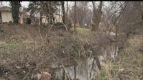 IMPD: Infant's body found in creek