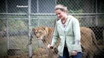 Cage door now the focus of lion attack investigation