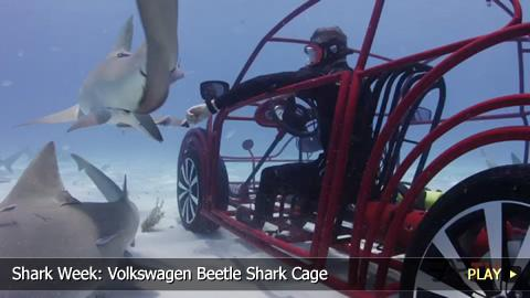 Shark Week: Volkswagen Beetle Shark Cage