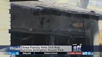 Family Pets Die In East Arlington Fire