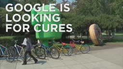 Google looks for cures