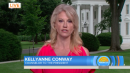 Kellyanne Conway laments 'obsession' with Trump's tweets