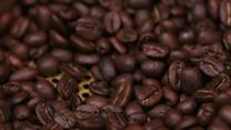 Epicuriousity - Gevalia: Roasting Coffee Beans to Perfect a Smooth Finish