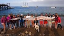18-foot-long oarfish found off Calif. coast