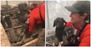 Puppy pulled from rubble following California wildfire