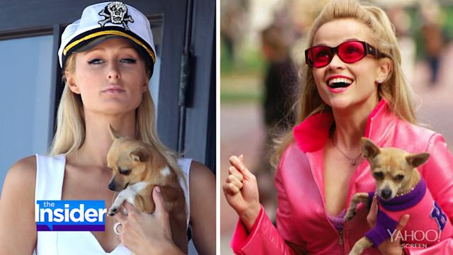 Paris Hilton's 'Legally Blonde' Moment