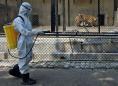 Indian leaders hesitate to end world's biggest lockdown