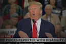 The Lincoln Project's newest ad takes aim at Trump's mocking of a disabled reporter