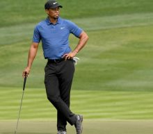 Hank Haney: Tiger not 'enthralled' by idea of mounting comeback